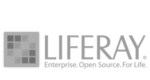 Liferay - Enterprise Open Source Portal and Collaboration Software